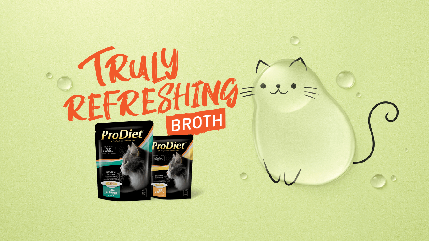 ProDiet Broth Header