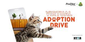 Virtual Adoption Drive